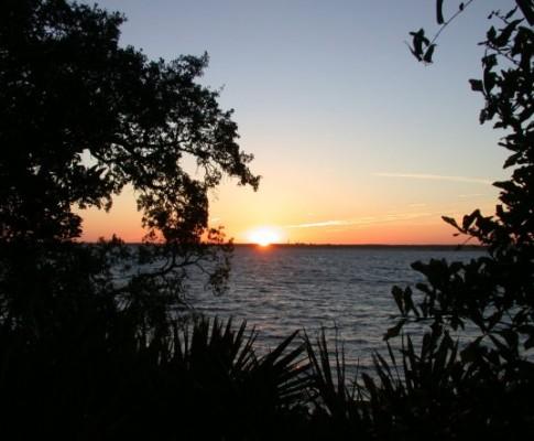 Cumberland Island, GA